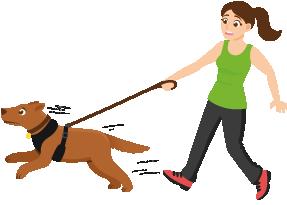 ragazza con cane da tiro il cane tira al guinzaglio