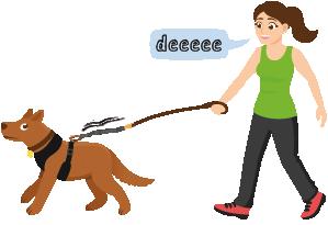 ragazza con cane dopo nessun addestramento a tirare il guinzaglio addestramento